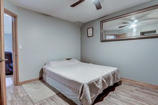 Photo 21: 126 Dovercliffe Way SE in Calgary: Dover Detached for sale : MLS®# A1082276
