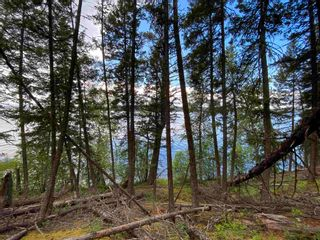 """Photo 17: LOT 7 S SOMERSET Drive: Cluculz Lake Land for sale in """"SOMERSET ESTATES"""" (PG Rural West (Zone 77))  : MLS®# R2596563"""