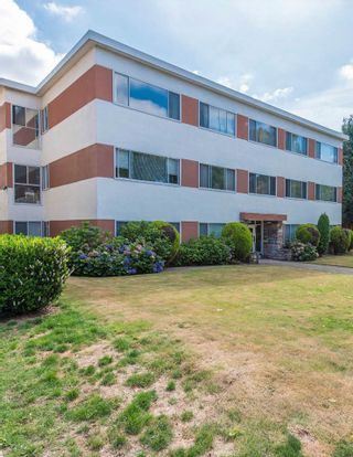 Photo 3: 3040 NANAIMO Street in Vancouver: Renfrew Heights Multi-Family Commercial for sale (Vancouver East)  : MLS®# C8035271