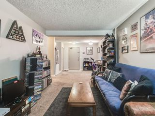 Photo 4: 7 3911 1 Street NE in Calgary: Highland Park Apartment for sale : MLS®# A1059987