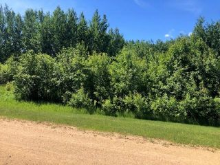 Photo 1: 9 Crystal Key: Rural Wetaskiwin County Rural Land/Vacant Lot for sale : MLS®# E4236327