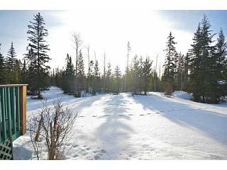 Photo 18: 12245 TEICHMAN Road in Prince George: Beaverley House for sale (PG Rural West (Zone 77))  : MLS®# N242032