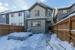 Photo 26: 86 Masters Crescent SE in Calgary: Mahogany Detached for sale : MLS®# A1071042