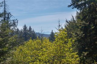 Photo 46: 851 Walfred Rd in : La Walfred House for sale (Langford)  : MLS®# 873542