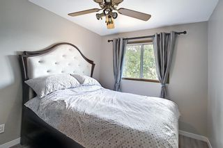 Photo 21: 335 Queensland Place SE in Calgary: Queensland Detached for sale : MLS®# A1137041