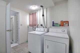 Photo 16: 3519 13 Avenue in Edmonton: Zone 29 House for sale : MLS®# E4238618