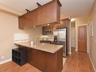 """Photo 9: 272 8328 207A Street in Langley: Willoughby Heights Condo for sale in """"Yorkson Creek"""" : MLS®# R2417245"""
