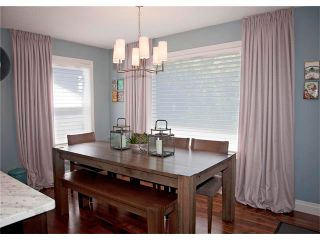 Photo 14: 67 CHAPMAN Way SE in Calgary: Chaparral House for sale : MLS®# C4065212