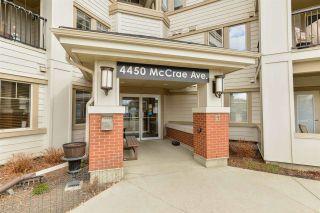 Photo 38: 206 4450 MCCRAE Avenue in Edmonton: Zone 27 Condo for sale : MLS®# E4242315