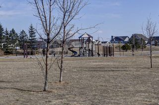 Photo 34: 419 117 Copperpond Common SE in Calgary: Copperfield Apartment for sale : MLS®# A1085904