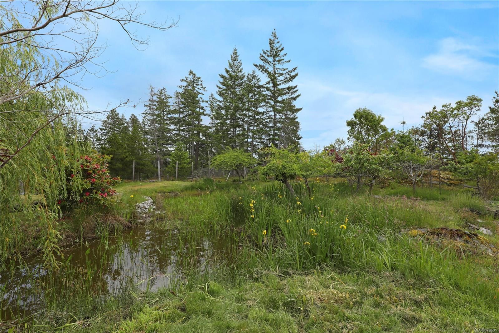 Photo 25: Photos: 979 Thunder Rd in : Isl Cortes Island House for sale (Islands)  : MLS®# 878691