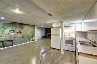 Photo 28: 4604 Maryvale Drive NE in Calgary: Marlborough Detached for sale : MLS®# A1090414