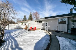 Photo 39: 8207 7 Street SW in Calgary: Kingsland Detached for sale : MLS®# A1080645