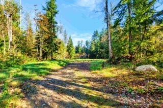 Photo 15: 30255 BRACKLEY Avenue in Mission: Stave Falls Land for sale : MLS®# R2527114