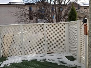 Photo 17: 28 Whitley Drive in Winnipeg: Residential for sale (2E)  : MLS®# 202026814