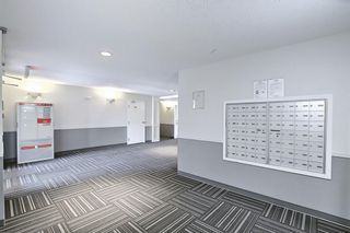 Photo 28: 2206 604 8 Street SW: Airdrie Apartment for sale : MLS®# A1081964