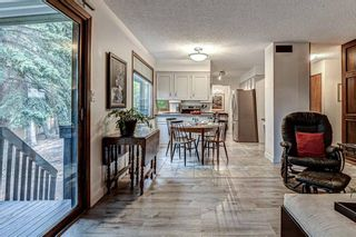 Photo 15: 88 Berkley Rise NW in Calgary: Beddington Heights Detached for sale : MLS®# A1127287