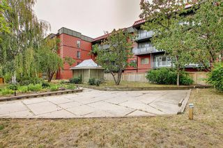 Photo 21: 119 333 Garry Crescent NE in Calgary: Greenview Apartment for sale : MLS®# A1139361