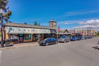 Photo 33: 725 51 Avenue SW in Calgary: Windsor Park House for sale : MLS®# C4143255