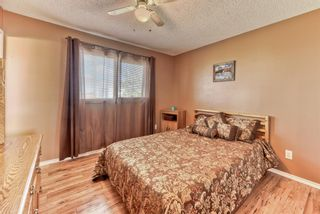 Photo 23: 424 Cole Crescent: Carseland Detached for sale : MLS®# A1106001