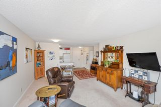 Photo 8: 215 10110 Fifth St in : Si Sidney North-East Condo for sale (Sidney)  : MLS®# 880325
