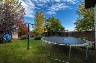 Photo 41: 32 CHUNGO Drive: Devon House for sale : MLS®# E4265731