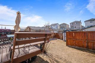 Photo 30: 174 Citadel Acres Close NW in Calgary: Citadel Detached for sale : MLS®# A1087692