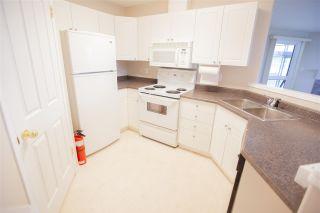 Photo 9: 408 7905 96 Street in Edmonton: Zone 17 Condo for sale : MLS®# E4241661