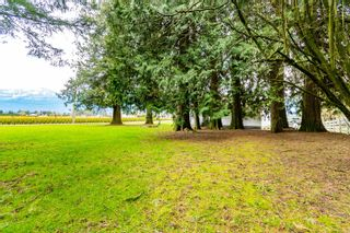 Photo 10: 48563 YALE Road in Chilliwack: East Chilliwack House for sale : MLS®# R2615661