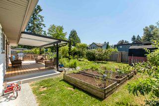 Photo 21: 20878 CAMWOOD Avenue in Maple Ridge: Southwest Maple Ridge House for sale : MLS®# R2597329