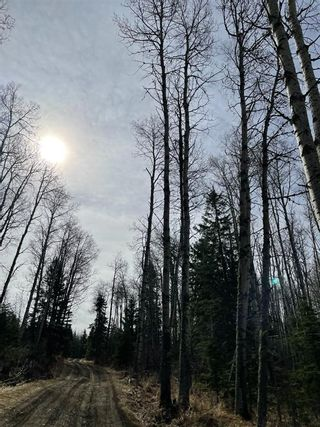 Photo 37: 34269 Range Road 61: Rural Mountain View County Detached for sale : MLS®# A1104811