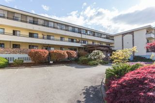 """Photo 25: 309 20460 54 Avenue in Langley: Langley City Condo for sale in """"WHEATCROFT MANOR"""" : MLS®# R2454205"""