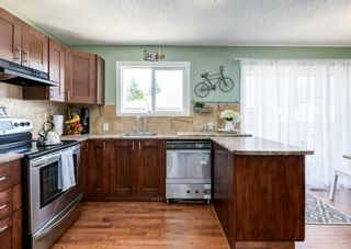 Photo 9: 3042 30A Street SE in Calgary: Dover Detached for sale : MLS®# A1097578