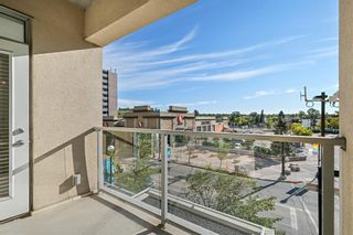 Photo 15: 303 1110 3 Avenue NW in Calgary: Hillhurst Apartment for sale : MLS®# A1124916