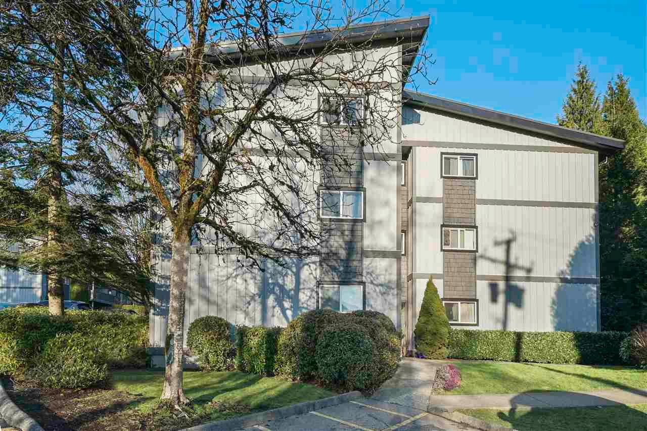 Main Photo: 243 202 WESTHILL Place in Port Moody: College Park PM Condo for sale : MLS®# R2575361
