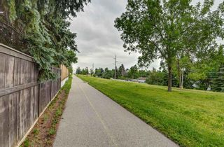 Photo 41: 88 Berkley Rise NW in Calgary: Beddington Heights Detached for sale : MLS®# A1127287