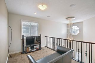 Photo 24: 458 Saddlelake Drive NE in Calgary: Saddle Ridge Detached for sale : MLS®# A1086829