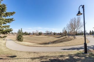 Photo 25: 1003 Fonda Court SE in Calgary: Forest Heights Semi Detached for sale : MLS®# A1092366