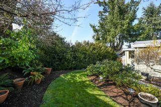 Photo 96: 3882 Royston Rd in : CV Courtenay South House for sale (Comox Valley)  : MLS®# 871402