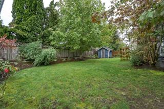 Photo 20: 10571 164 Street in Surrey: Fraser Heights House for sale (North Surrey)  : MLS®# R2179684