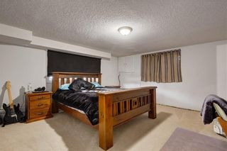 Photo 28: 7243 65 Avenue NW in Calgary: Silver Springs House for sale : MLS®# C4174046