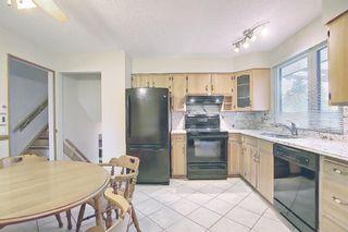 Photo 8: 3203 Oakwood Drive SW in Calgary: Oakridge Detached for sale : MLS®# A1109822