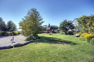 """Photo 26: 228 12633 NO 2 Road in Richmond: Steveston South Condo for sale in """"NAUTICA NORTH"""" : MLS®# V845784"""