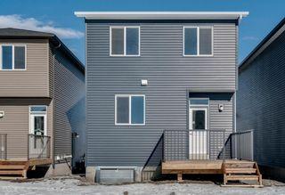 Photo 30: 286 Cornerstone Crescent NE in Calgary: Cornerstone Detached for sale : MLS®# A1075287