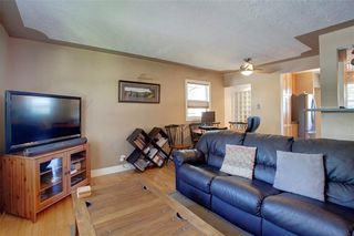 Photo 19: 2451 28 Avenue SW in Calgary: Richmond Detached for sale : MLS®# A1063137