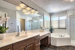 Photo 24:  in Calgary: Royal Oak Detached for sale : MLS®# A1087118