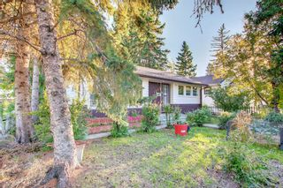 Photo 49: 1235 20 Avenue NW in Calgary: Capitol Hill Detached for sale : MLS®# A1146837