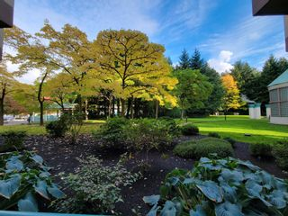 """Photo 34: 9C 328 TAYLOR Way in West Vancouver: Park Royal Condo for sale in """"WEST ROYAL"""" : MLS®# R2625618"""