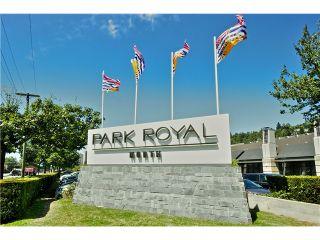 "Photo 14: 651 INGLEWOOD Avenue in West Vancouver: Cedardale Land for sale in ""CEDARDALE"" : MLS®# V1019564"