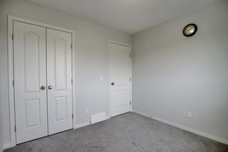 Photo 17: 8 COPPERPOND Avenue SE in Calgary: Copperfield Detached for sale : MLS®# C4296970